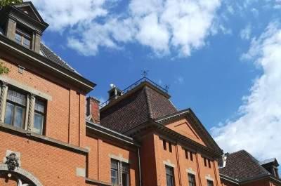 Pelču pils jumta vienkāršotā atjaunošana, Pelču pils, Pelču pagastā, Kuldīgas novadā
